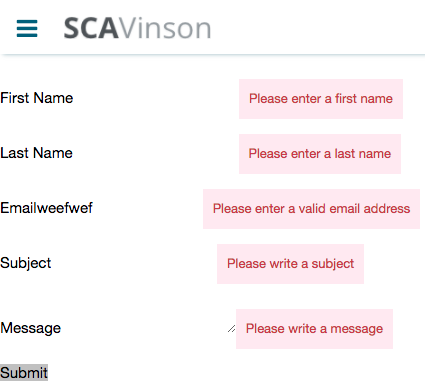 The form showing error messages for each of the fields