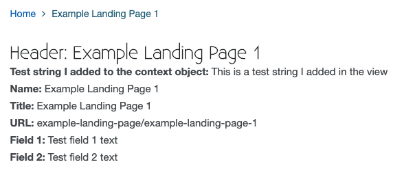 A screenshot of a web store showing an instance of a newly created example custom landing page.